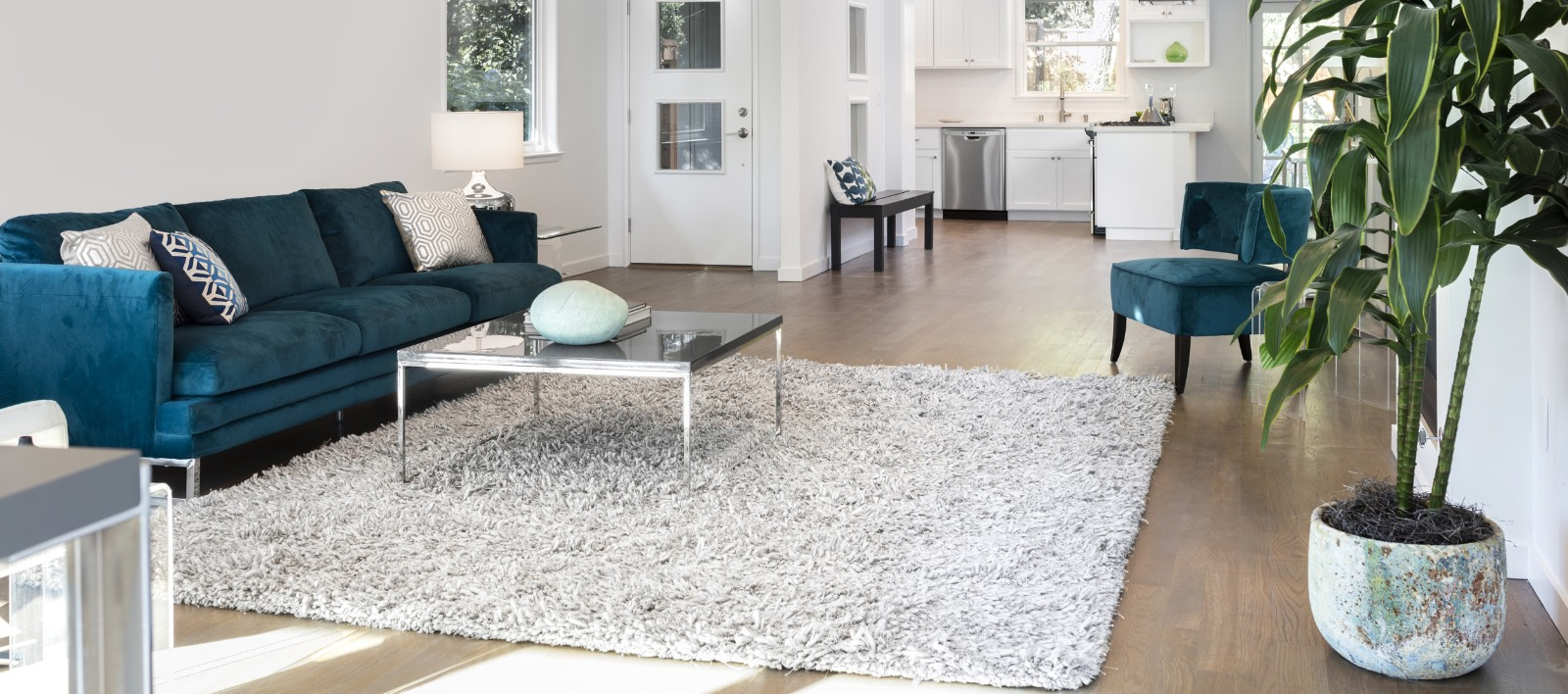 Boise Carpet Cleaning Carpet Cleaner Eagle Id